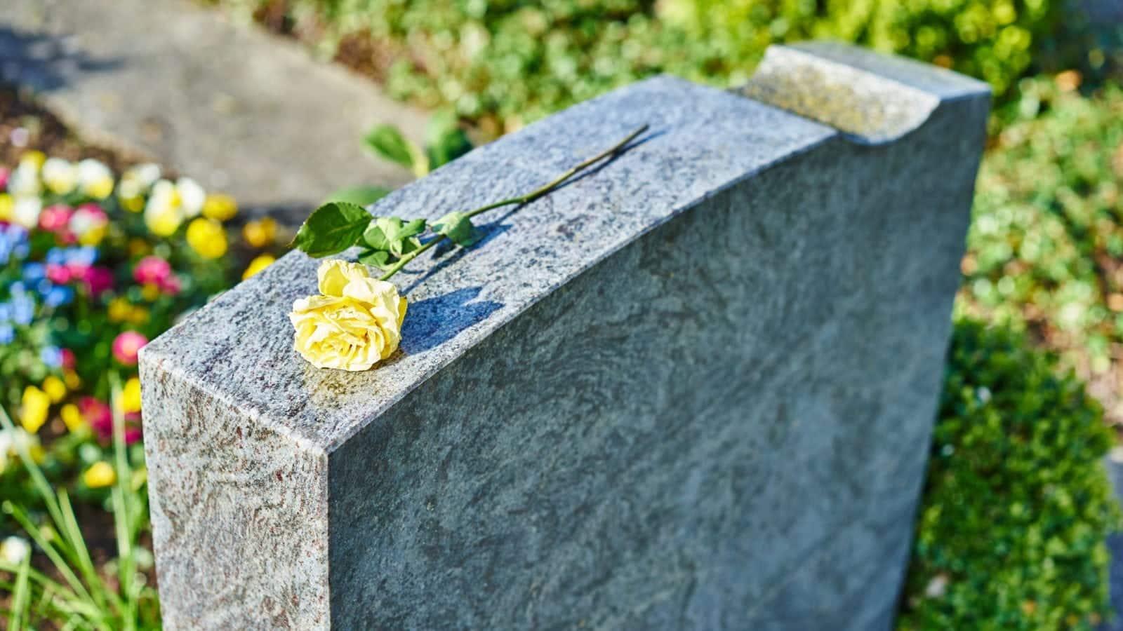 Yellow Rose On Gravestone Stock Photo